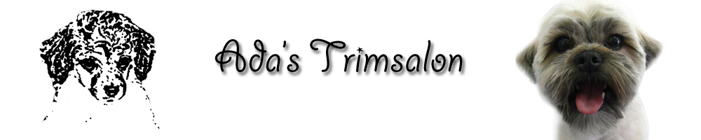 logo_trimsalon