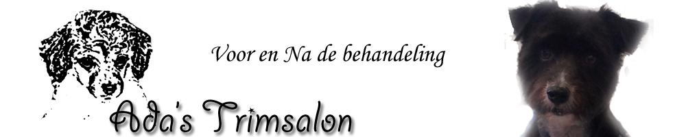 logo_voorenna